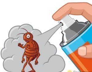 Как избавиться от тараканов в квартире раз и навсегда?